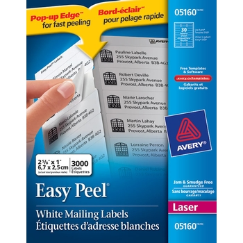 Avery® Labels : white